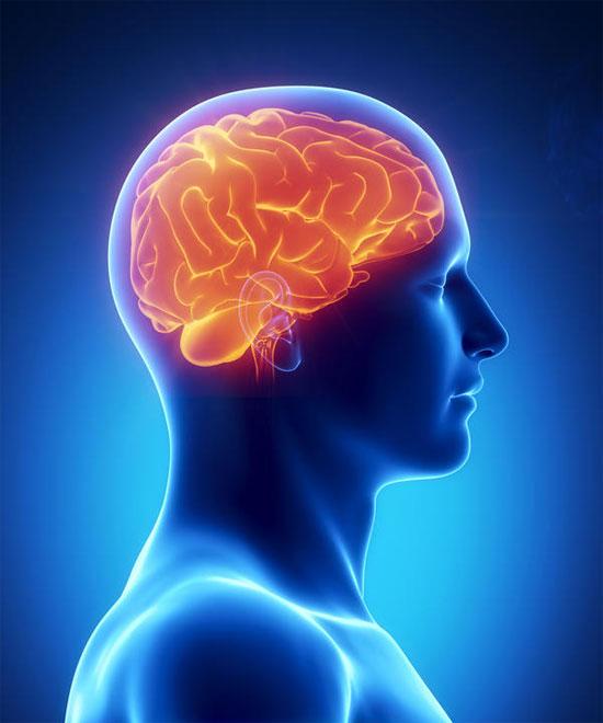 Với unibrain thiểu năng tuần hoàn máu não không còn là nỗi lo